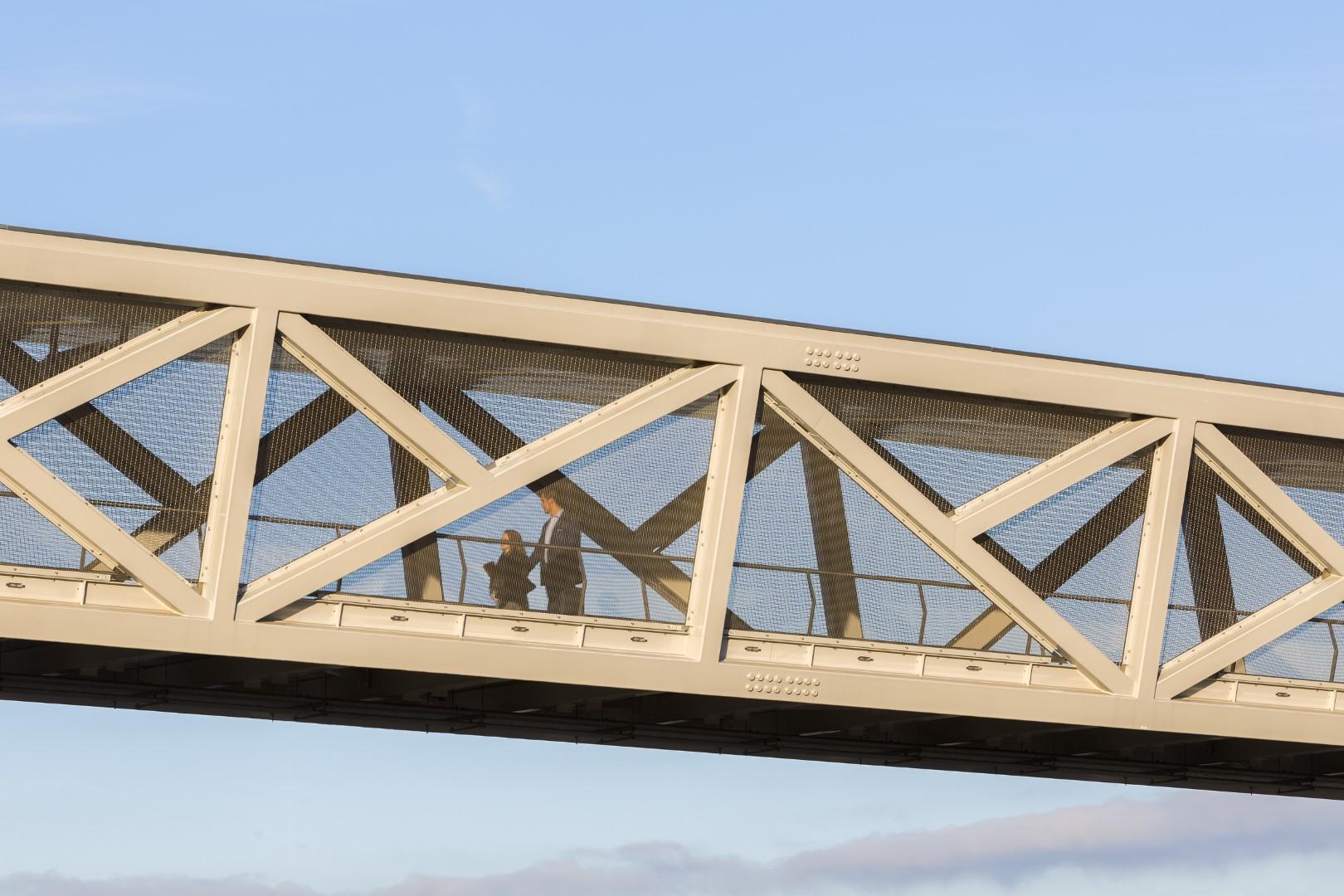 FPZ-44 wire mesh for Pedestrian Bridge enclosure