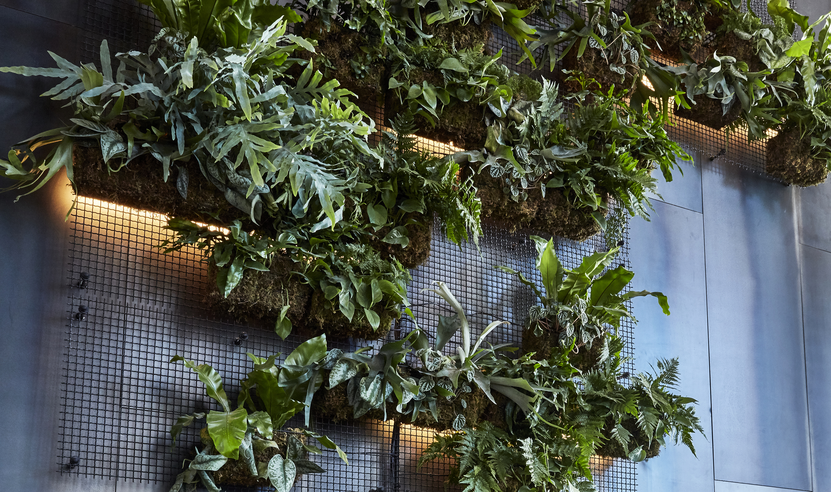 The vertical wall blends industrial elements with natural ones against a backdrop of concrete and steel and is laid out in such a way to ensure that vegetation can grow organically over the canvas.