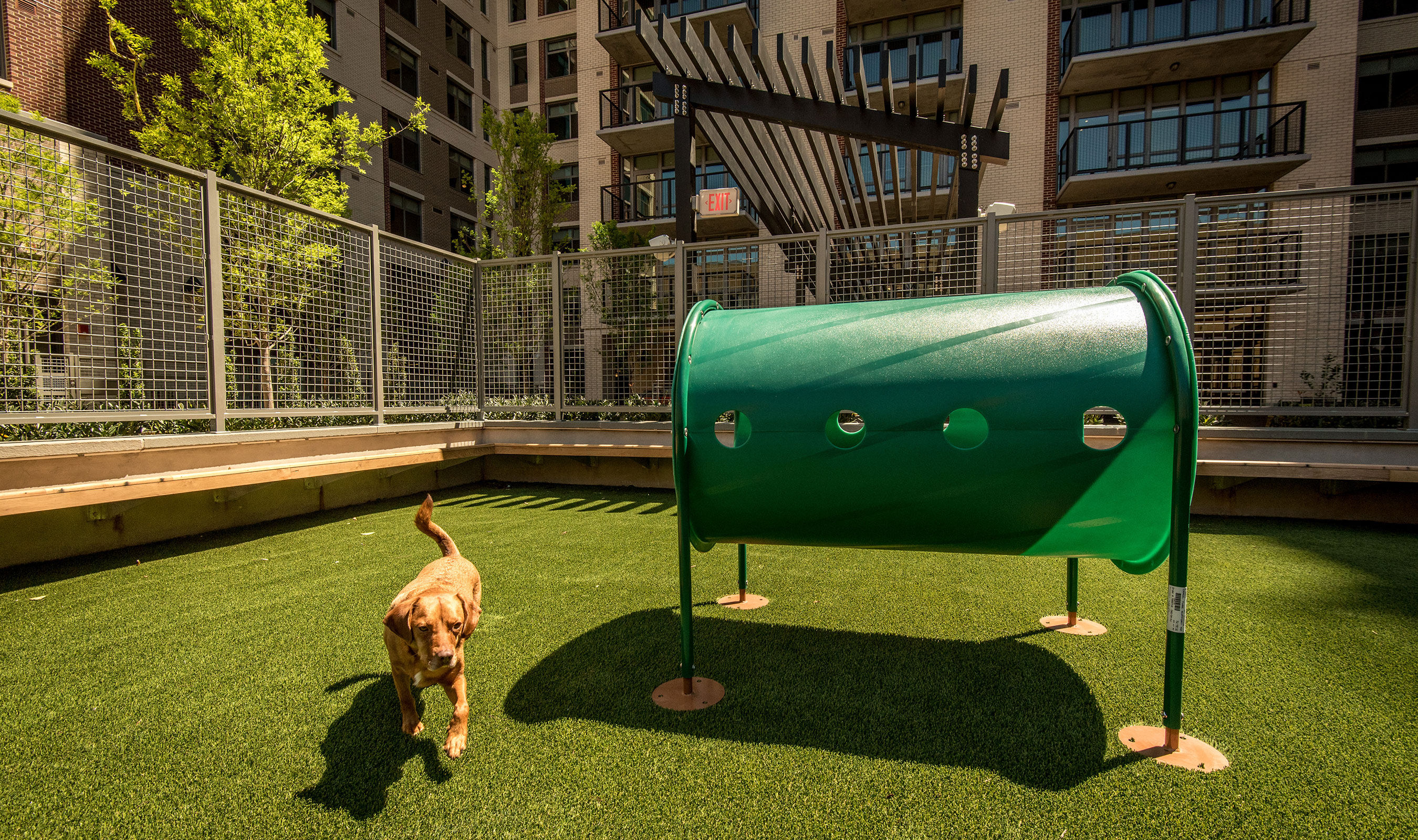 Banker Wire's L-62 woven wire mesh is used as part of the pet park enclosure at AVA NoMa.