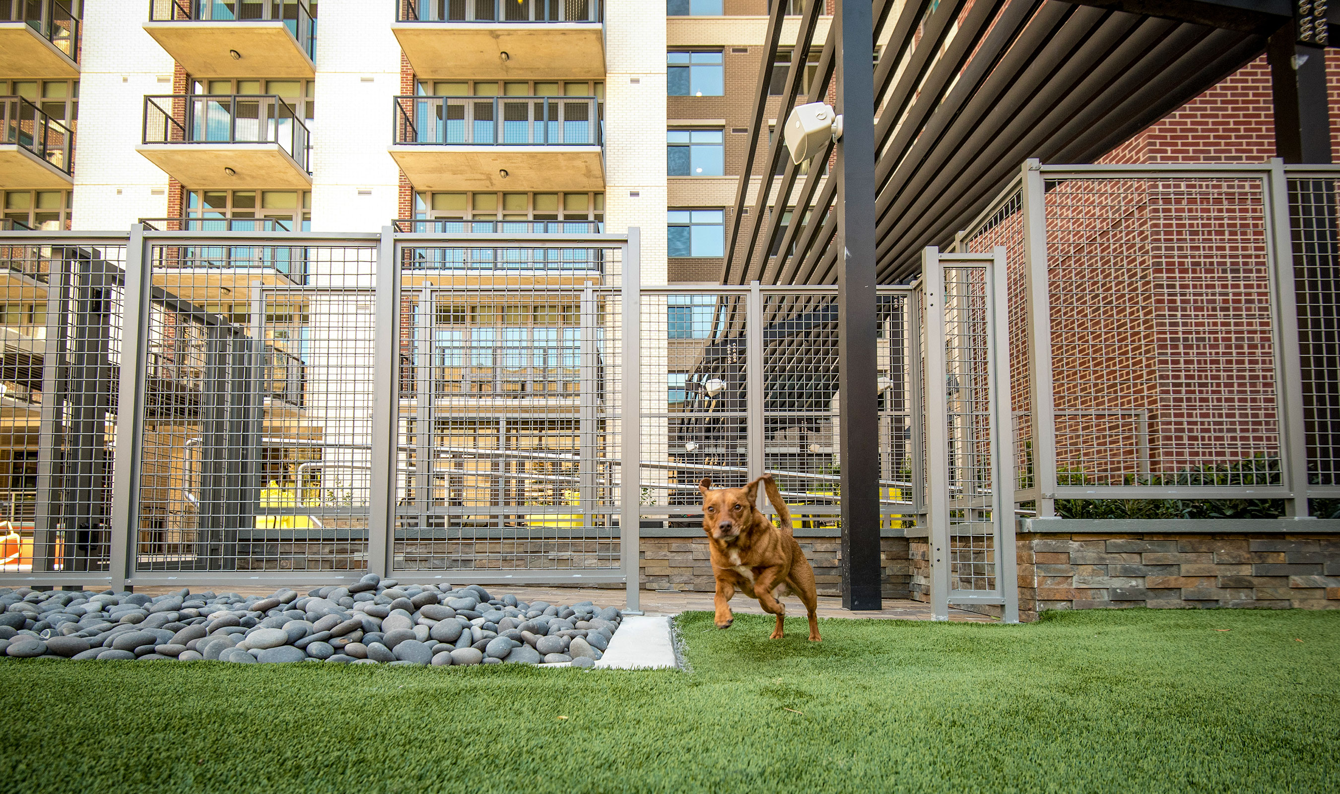 Strong and durable, Banker Wire's L-62 woven wire mesh pattern makes a great choice for a pet park enclosure.