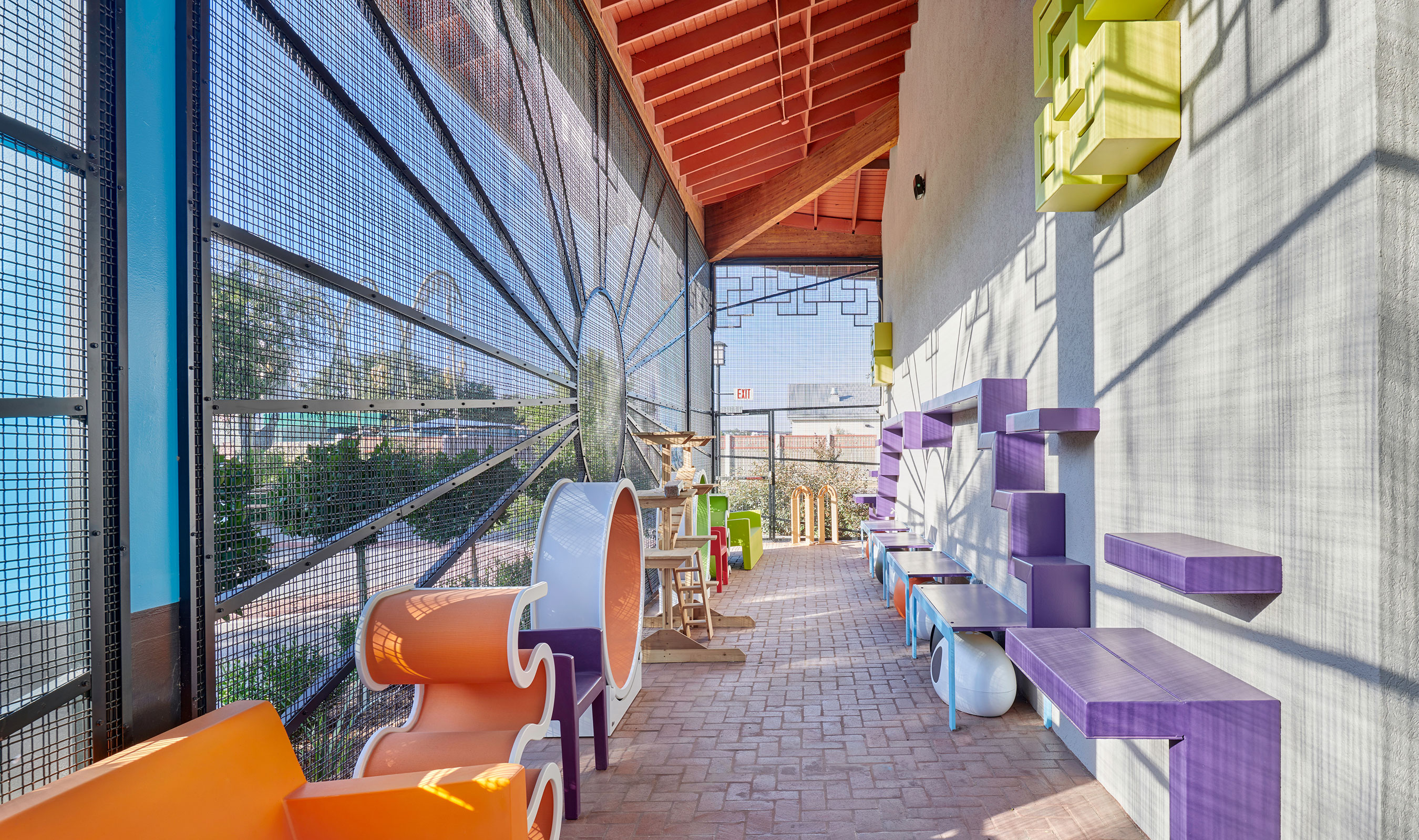 Banker Wire's SJD-2 woven wire mesh at the El Paso Zoo cat adoption center allows interaction between the cats and potential adoptees while keeping the cats safe.